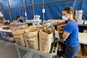 "A volunteer loads food into bags at the Alameda Food Bank distribution center in Alameda, CA, on April 15, 2019. The food was distributed later through a drive-through to people in need following the loss of their jobs due to the ""shelter-in-place"" order to limit the spread of the coronavirus SARS-CoV-2."