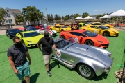 Owners of exotic cars gather at an event in Petaluma, CA, on June 27, 2020, while trying to respect social distancing rules due the ongoing COVID-19 pandemic. The event, held at the Adobe Road Wines winery , was organized by 100|OCT, an exotic car community on the US West Coast  founded by Frenchman Benoit Boningue. The event marked the final destination of a day ride through the region.